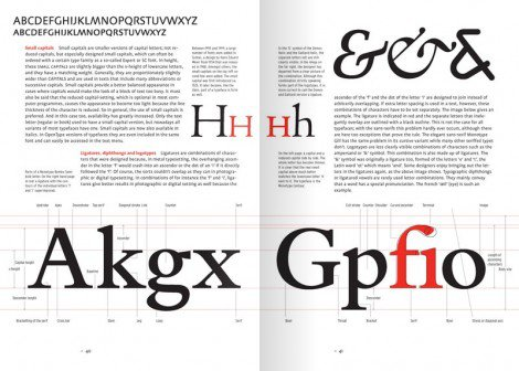 Letter Fountain: The Anatomy Of Type By Taschen