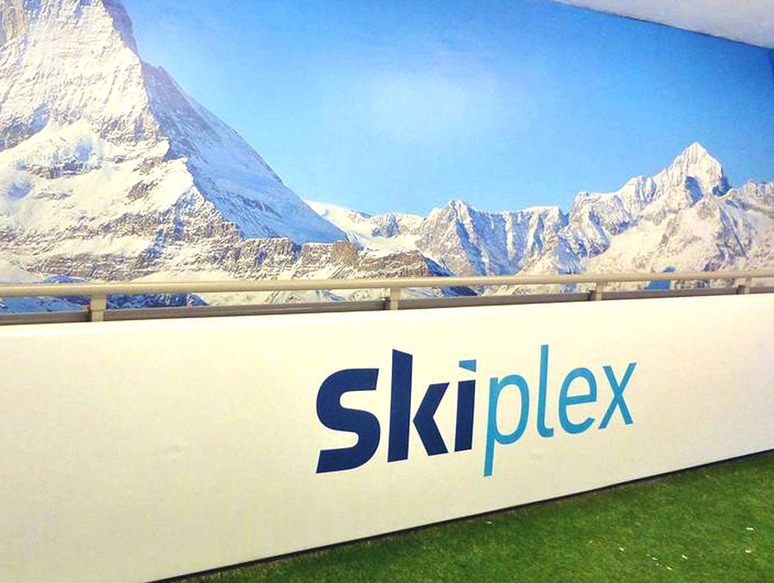 Skiplex logo hoarding designed by The Logo Smith