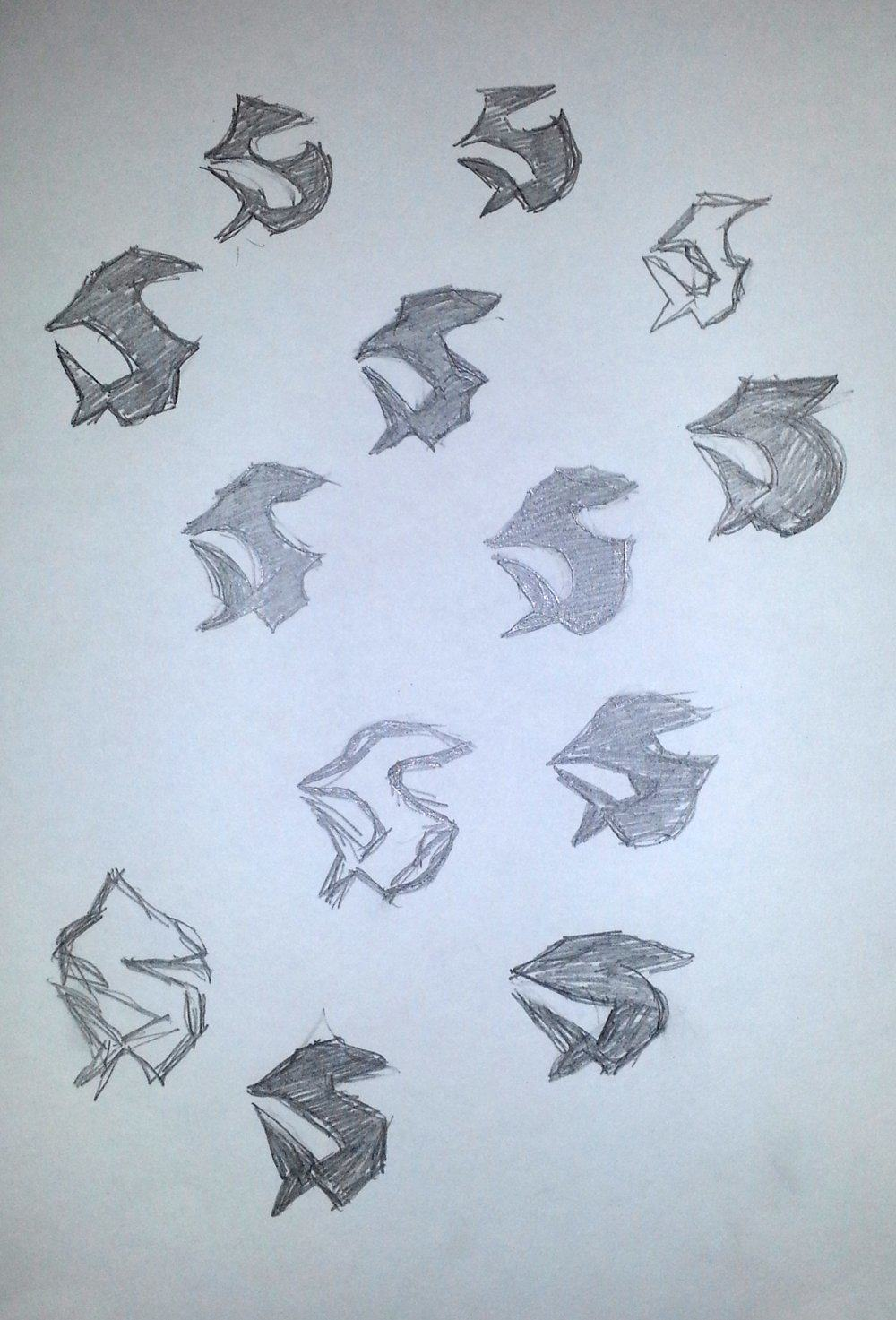 shark sketches