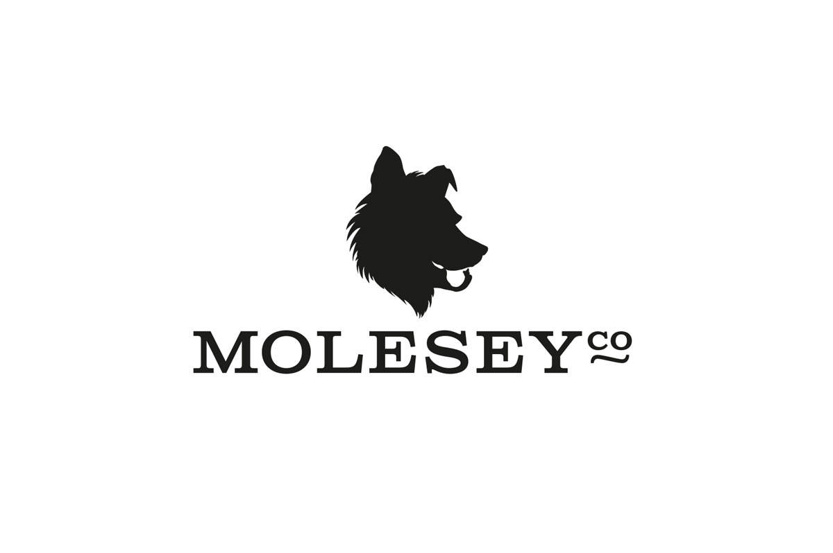 MolseyInc-logo-designed-by-Graham-Smith-Small