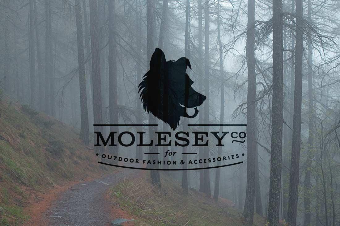 MoleseyCo brand logo design by The Logo Smith