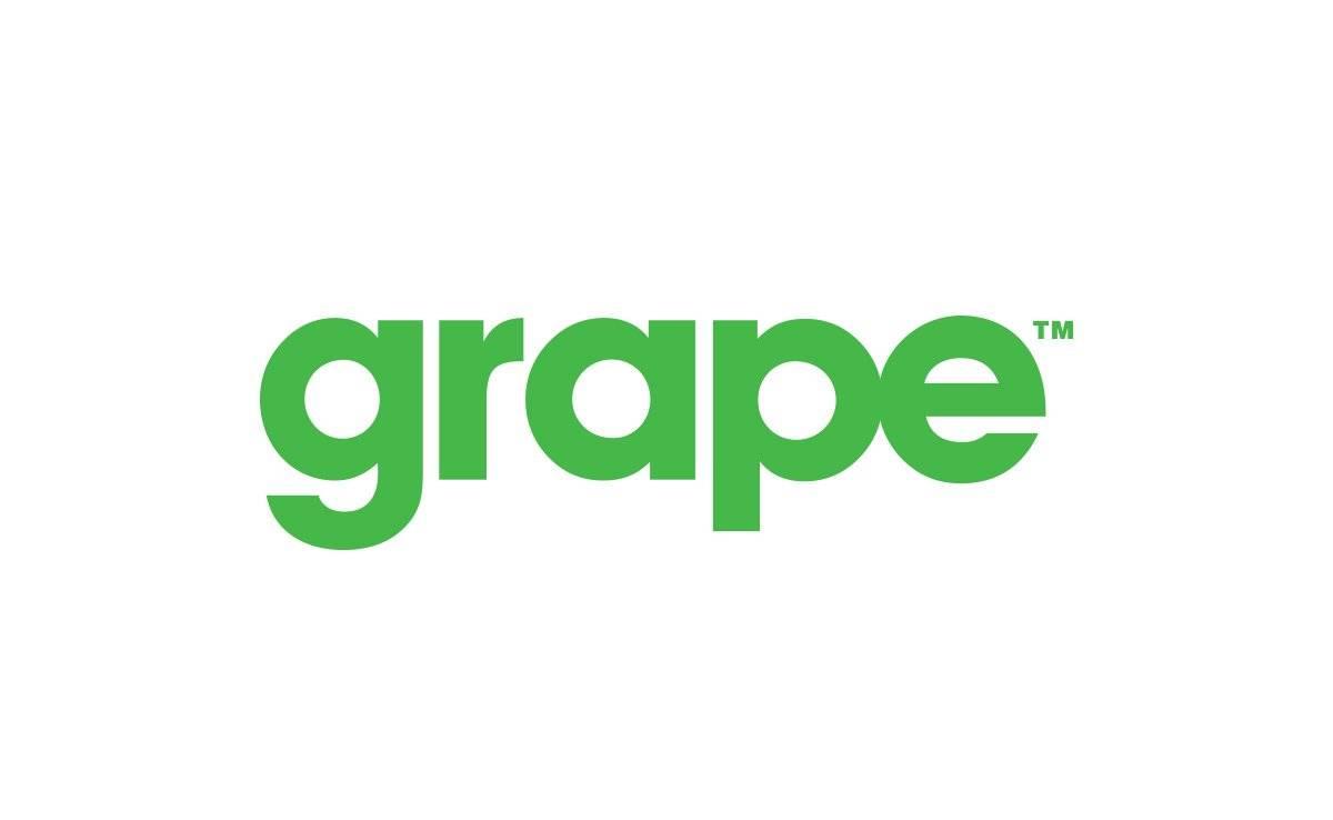 Grape-Logo-Design-Designed-by-The-Logo-Smith