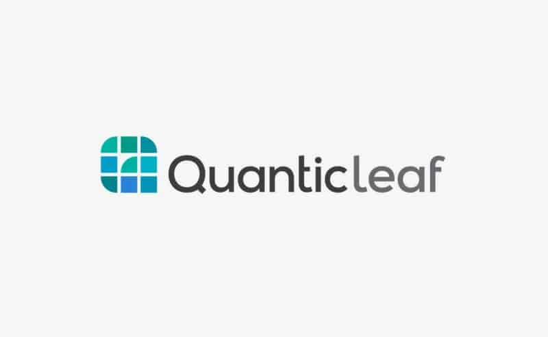 Quantic Leaf Logo Design Designed by The Logo Smith