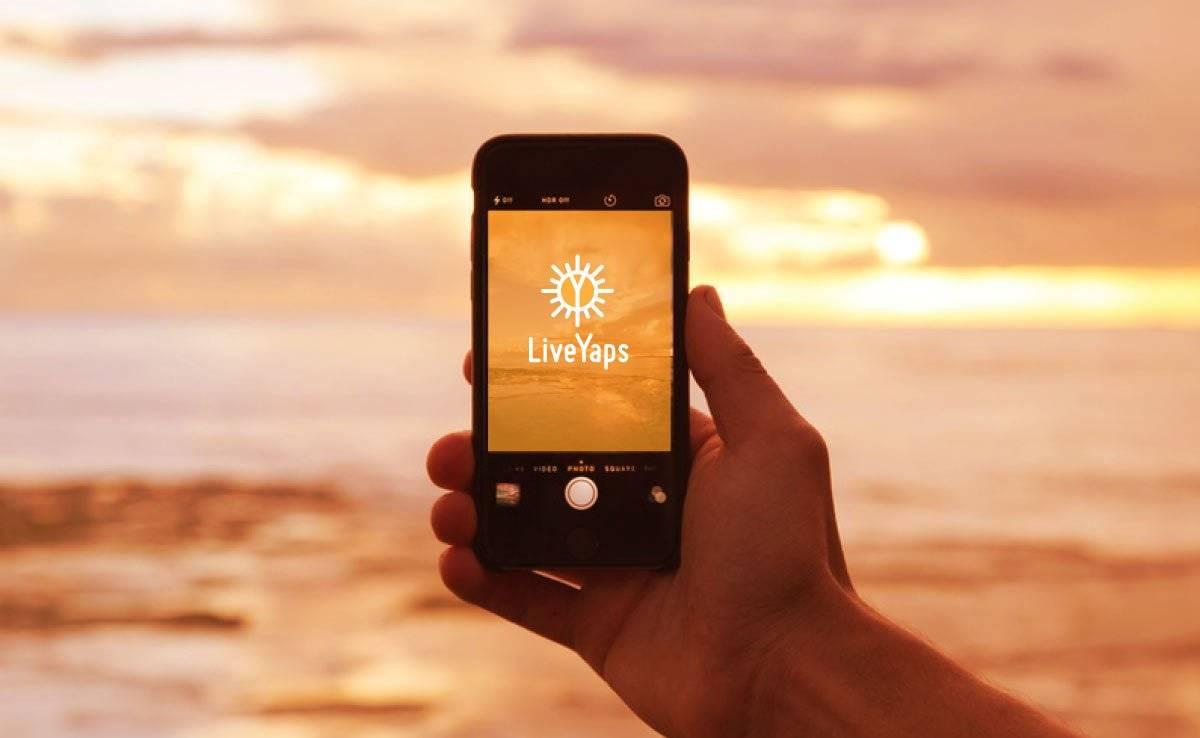 LiveYaps Logo Design Designed by The Logo Smith