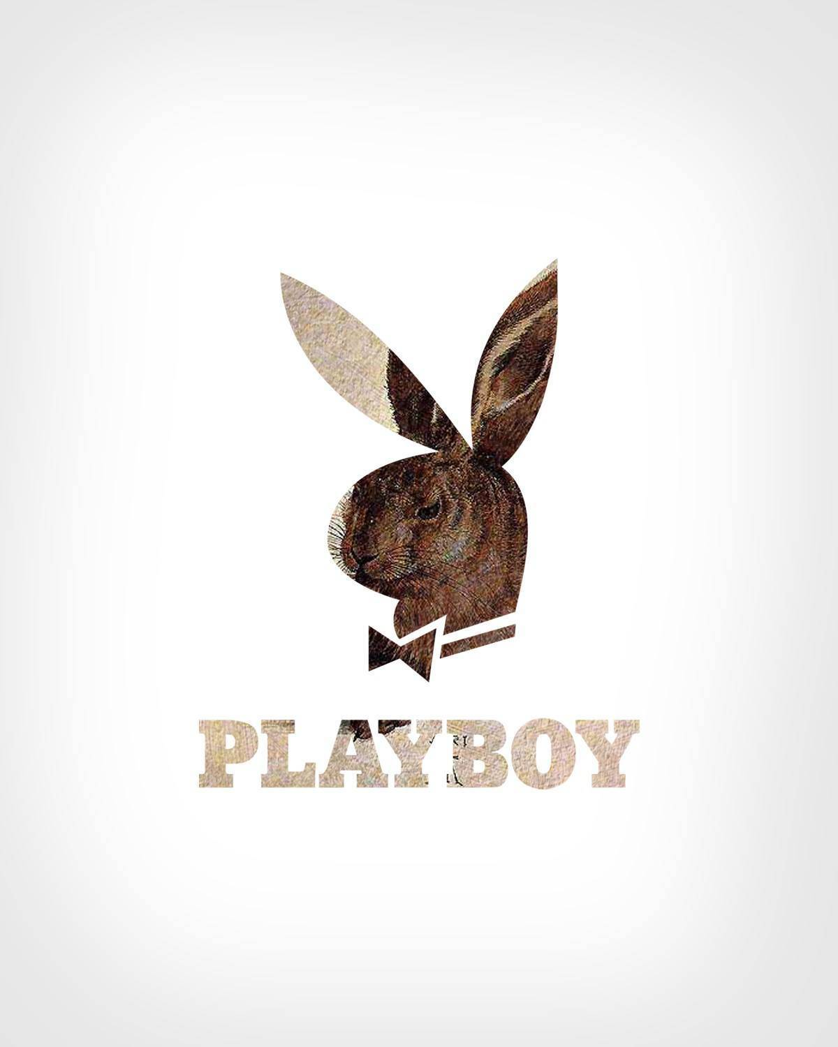 Playboy Logo + Young Hare by Albrecht Dürer