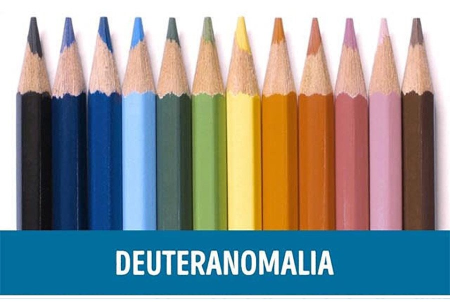 Color-blindness-demonstration---Deuteranomalia-Vision