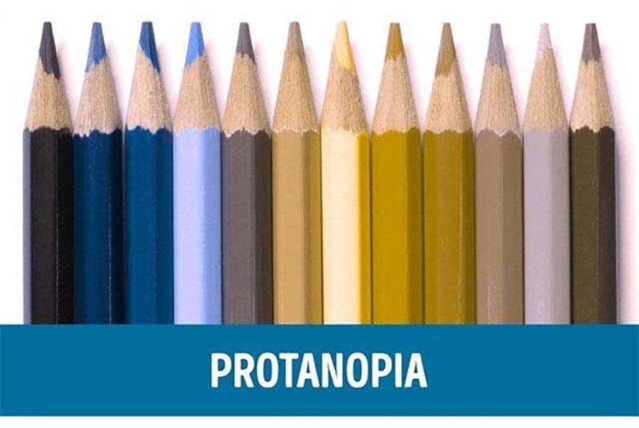 Color Blindness Demonstration Using Coloured Pencils