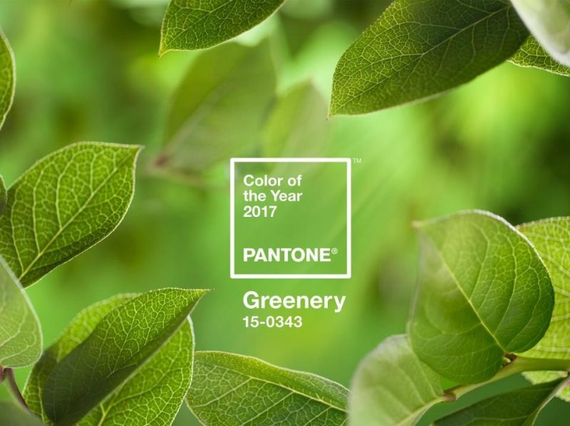 Pantone 2017 Color of the Year Greenery.