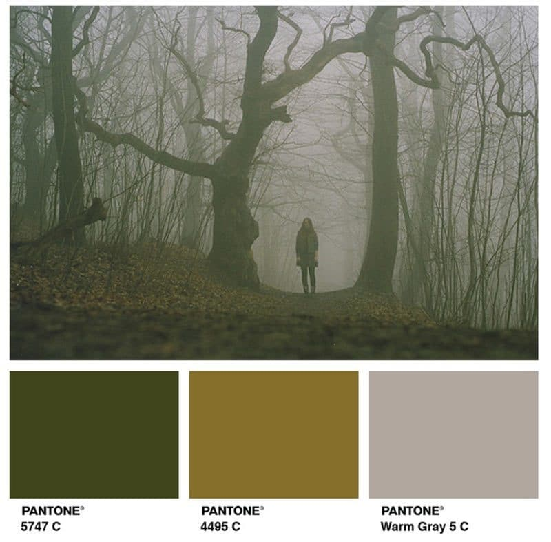 pantone-olive-green
