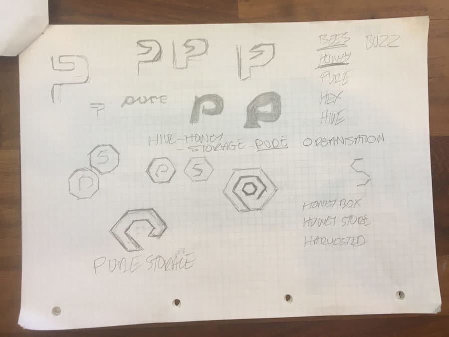 The Original Pure Storage Logo Design Ideas and Sketches by The Logo Smith