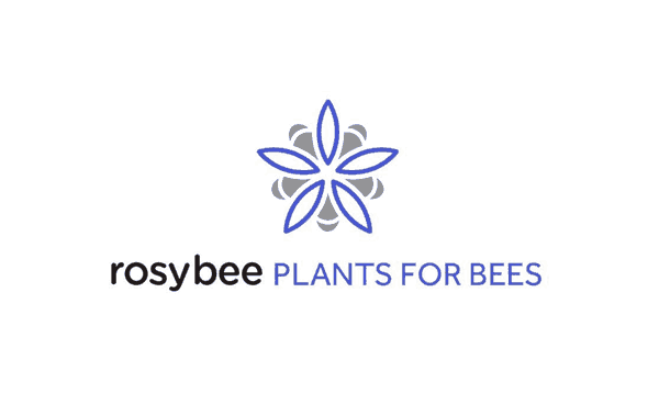Rosybee-Plants-for-Bees-Logo-Design-Designed-by-The-Logo-Smith-1