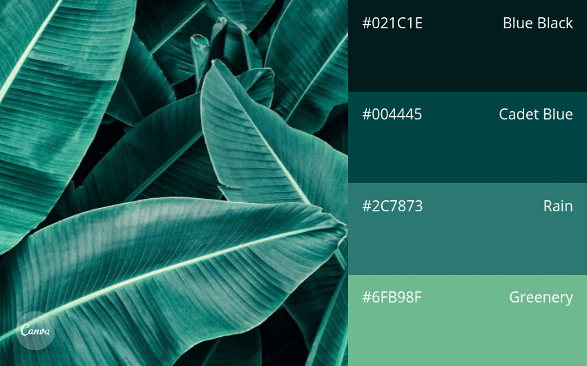 07.-Watery-Blue-Greens 100 Beautiful Colour Swatches and Combinations by Canva