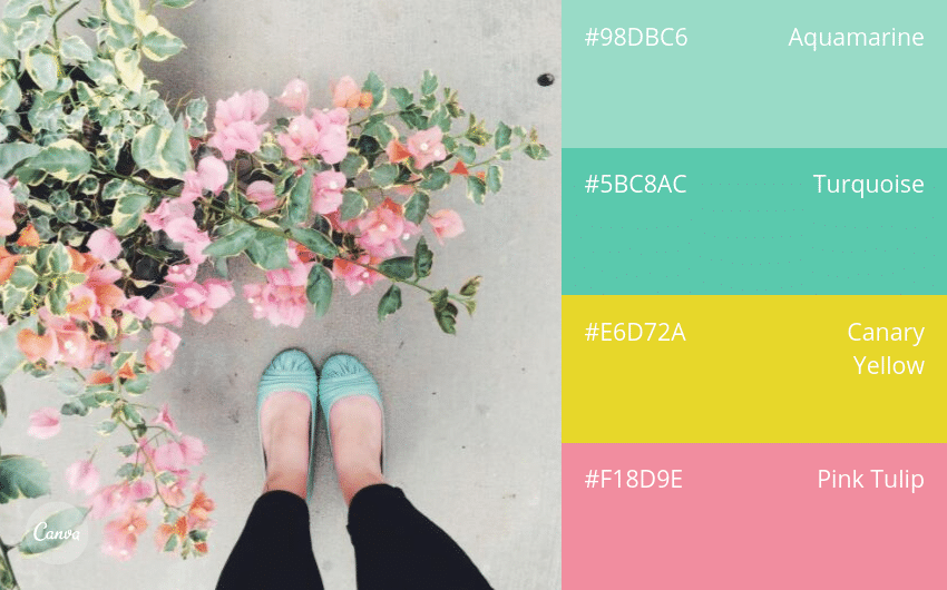 100 Beautiful Colour Swatches and Combinations by Canva
