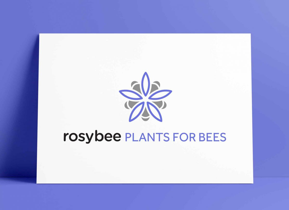 RosyBee Plants for Bees Logo Designed by The Logo Smith